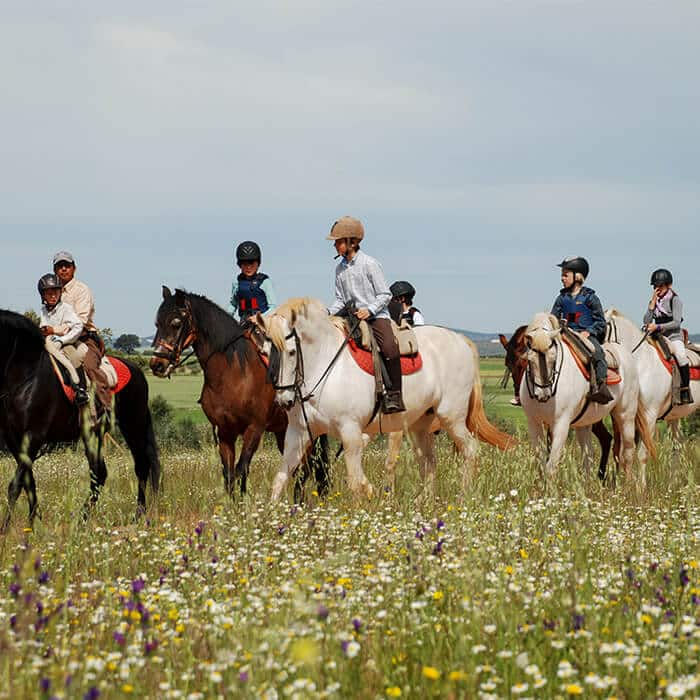 Horse riding excursion in Spain