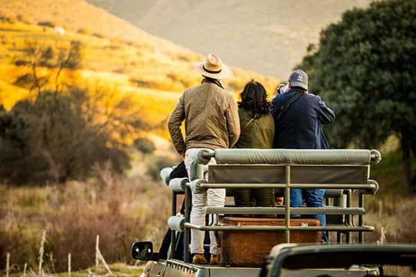 Safari fotográfico en alojamiento exclusivo en España